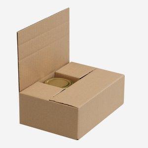 Verpackungskarton für 6 x Fac-212