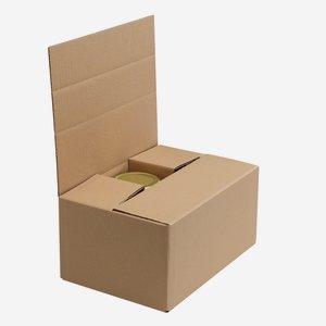 Verpackungskarton für 6 x Fac-720