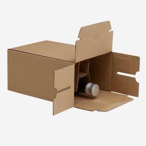 Verpackungskarton für 6x 0,25l Marasca Flasche